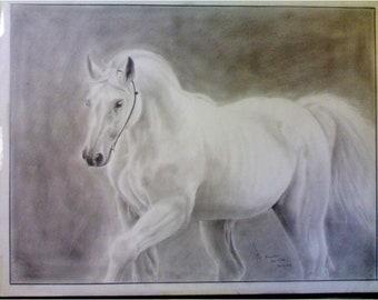Original Handmade Pencils Drawing for a white horse 640x500 mm
