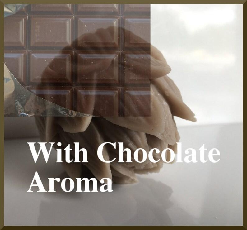 Chocolina-Anti-Stressball-Silicone Art Toys-Premium Quality image 0