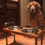 Industrial style Tall Raised Dog bowl stand - The beast