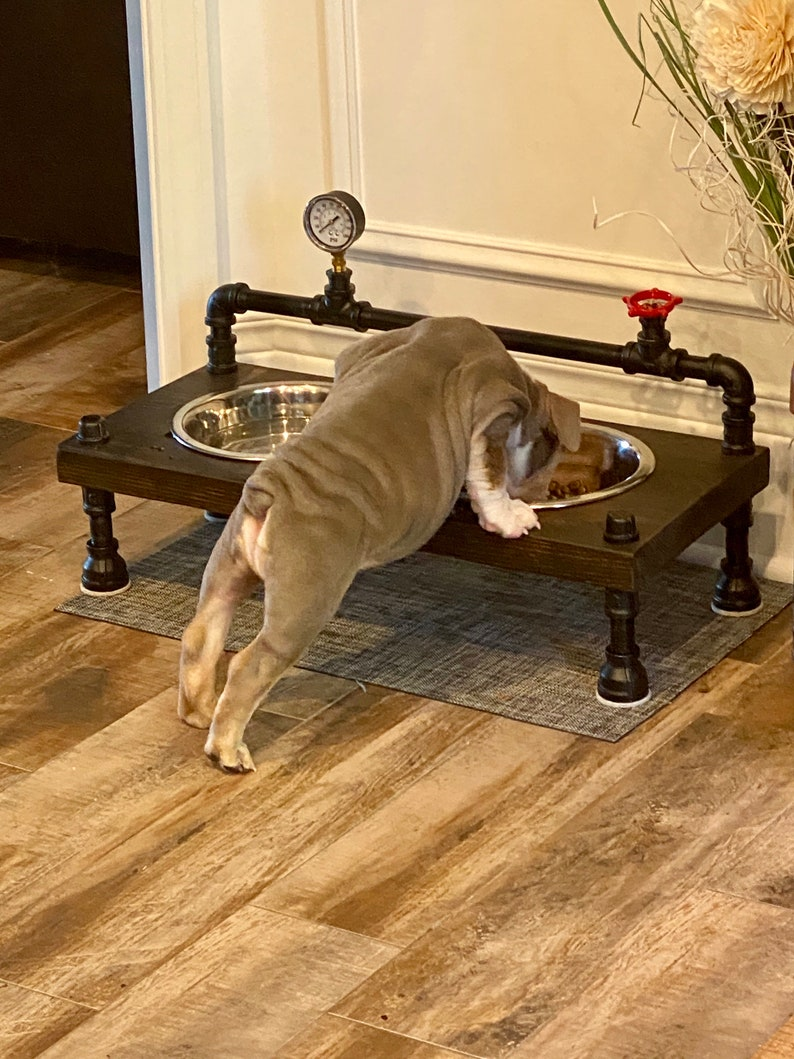 Steampunk style unique raised dog bowl feeder cool Dog image 0