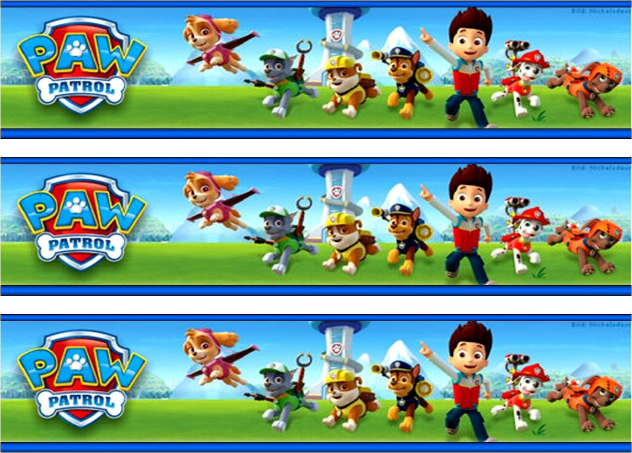 It is a photo of Clean Paw Patrol Borders