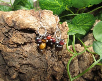 Earrings with Tiger eye and Hematite.