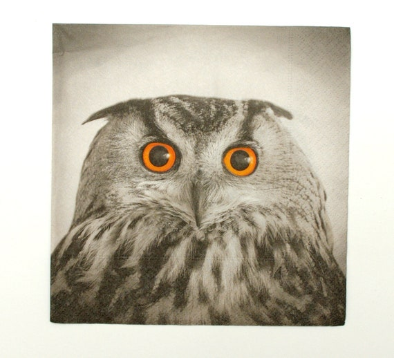 Napkins deer and owl 20 piece of tissue paper 33x33 cm