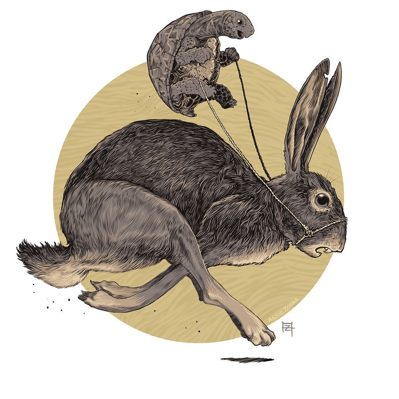The tortoise and the hare image 0