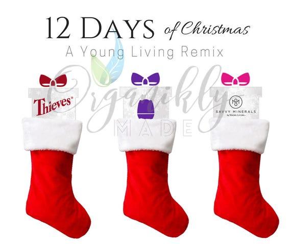 image 0 - 12 Days Of Christmas Remix