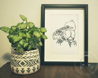 Art Print -  Kookaburra & Frogmouth