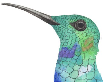 Turquoise hummingbird, watercolor painting, hummingbird print, hummingbird art, wall art
