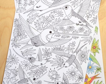 Humming Birds, wings, feathers, flowers, leaves, download, colouring sheet.