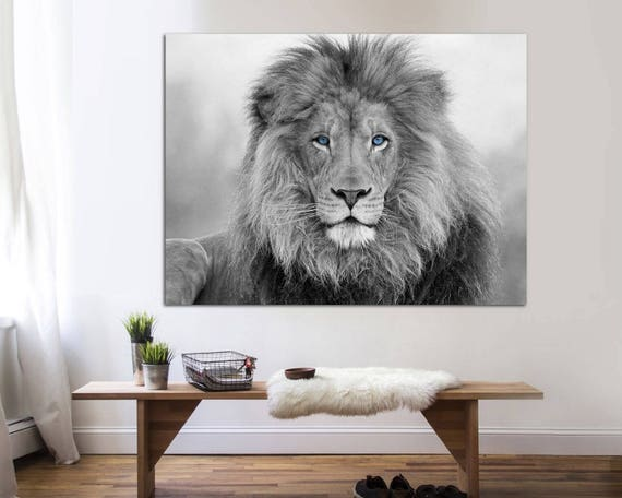African Lion Black And White Lion Print Canvas Print Lion Etsy