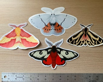 Jumbo Moth Sticker Pack