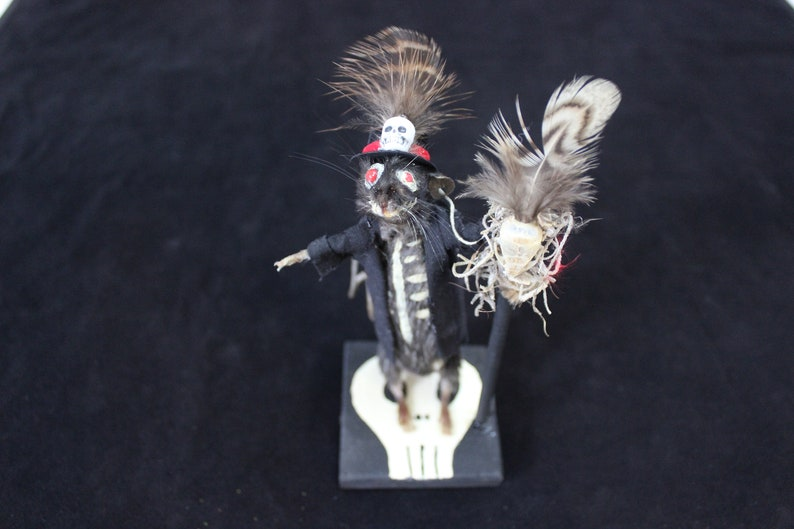 Mouse Taxidermy Art Voodoo Priest ~ Cute Anthropomorphic Rogue Freak  Sideshow Gaff Performer Oddities New Orleans Witch Doctor Occult Goth