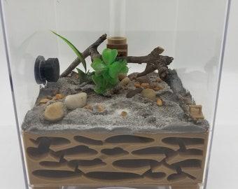 MEDIUM All in One Ant Farm Starter Kit Nest Formicarium