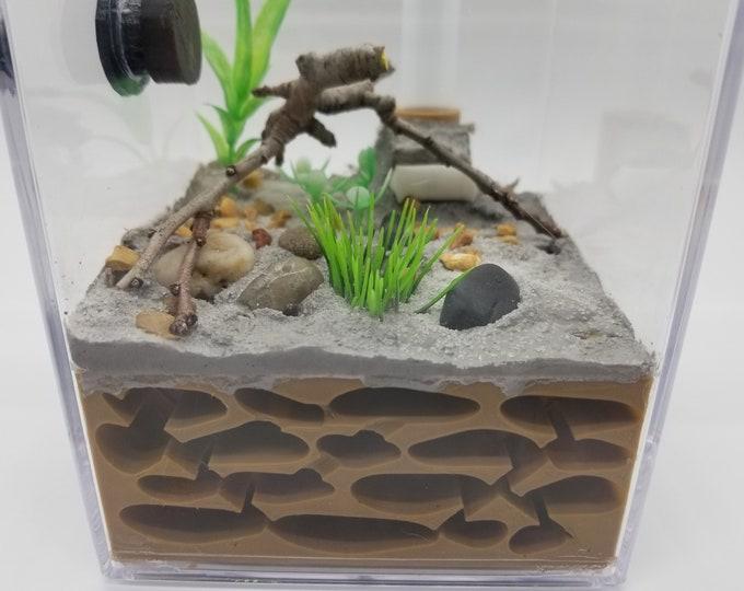 ALL IN ONE Ant Farm Starter Kit Nest Formicarium
