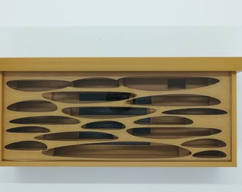 """8"""" Carpenter Camponotus Nest Formicarium FULL KIT"""