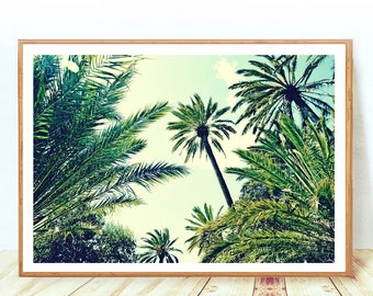 Palm Trees Poster, Palm Leaf, Tropical Poster, Palm Tree Print, Printable Palm Trees, Palm Photo Wall Decor, Palms Decor, Instant Download