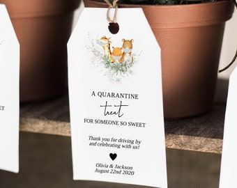 Baby Shower Social Distance Favor Tag, Drive By Baby Animals Shower Gift Tag, MSD-638