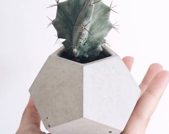 Without plant - small dodecahedron concrete planter