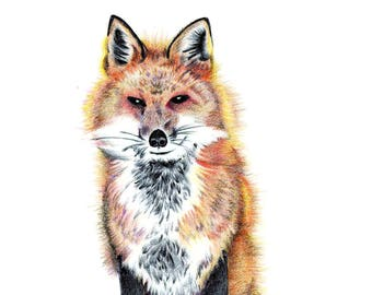 The Fox - 5 x 7 in greeting card