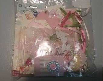 Kit paperbag album baby girl