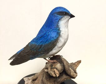 Tree Swallow, Bird, Carving, Hand carved, tupelo wood, blue, driftwood