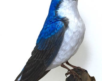 Tree Swallow, hand carved, tupelo wood, Blue, Bird, Carving