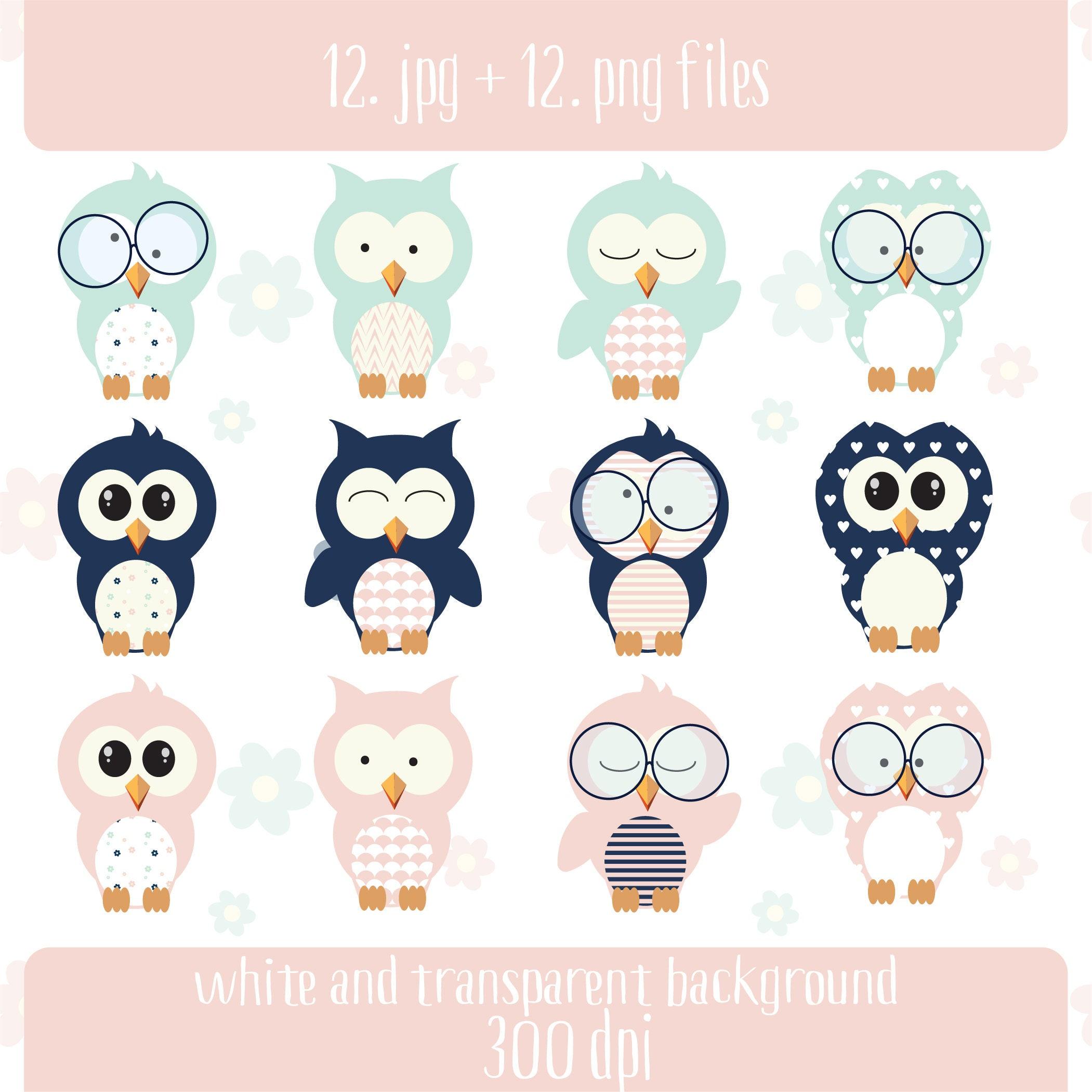 Mint Pink & Dark Blue Owl Clipart Baby Owl Nursery | Etsy