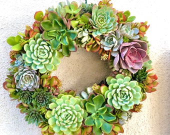 """Easy 15"""" DIY Succulent Wreath Kit - Now With More Succulents!"""
