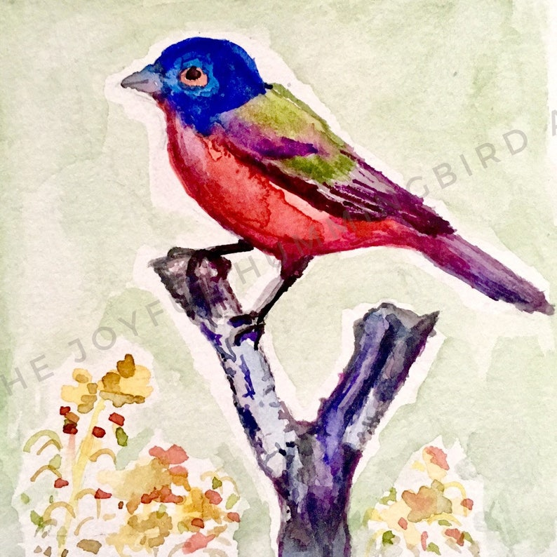 eef58eea4fd Painted bunting watercolor bird print nature bird lover gift