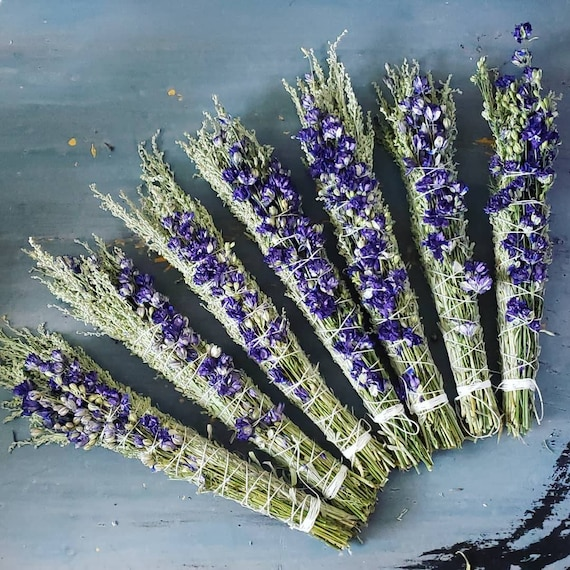 Desert Sagebrush and Meadow Larkspur Sacred Smoke Wand