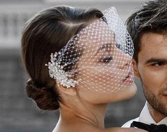 Birdcage veil Silver metallic headpiece with crystal 2 hair clip Blusher veil Cage Bridal Veil Scattered Short Wedding Veil Small Veil