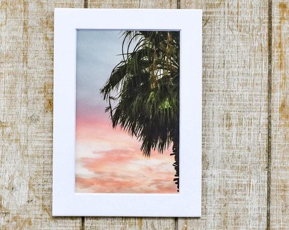 PalmTree with Sunset, Color Photograph, Wall Decor, Desert Photo, White Mat, 5 x 7 Mat, 8 x 10 Mat