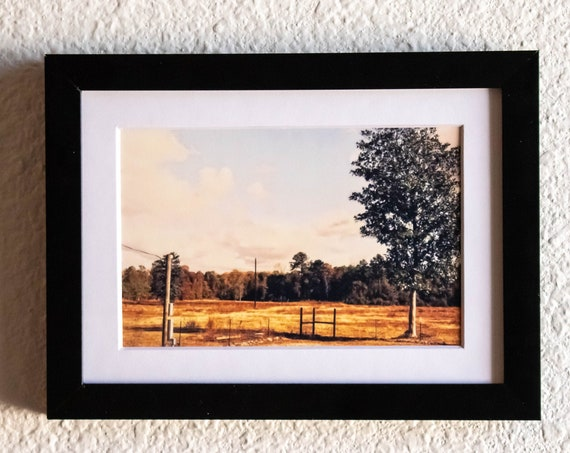 Texas Ranch, Color Photograph, Wall Decor, White Mat, Black Frame,  5 x 7 Photo