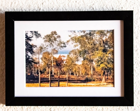 Texas Landscape, Color Photograph, Wall Decor, White Mat, Black Frame, 5 x 7 Photo