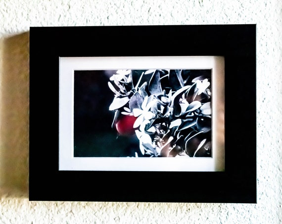 Floral Photography with Red Fruit, Wall Decor, Artistic Photograph, Black Frame, 5 x 7 Photograph