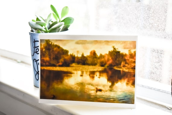 Ducks on the Pond Photo Greeting Card, Color Photo, Blank Greeting Card, 5 x 7 Card