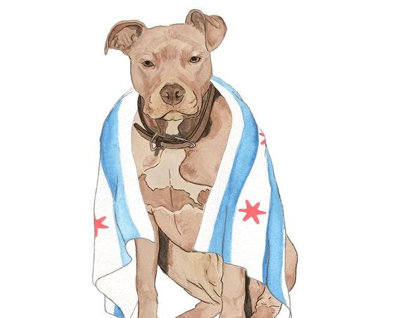 Chicago Flag Series