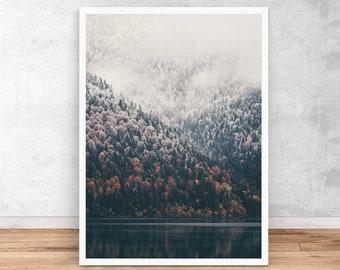 Forest Print, Forest autumn Landscape, Wall Art Print, Printable Digital Download, Interior Home decor, Nature Prints, Wilderness Poster art