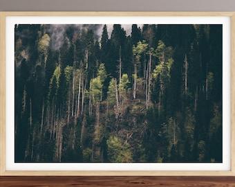 Forest Print, woods,  landscape print, Wall Art Print, Printable Digital Download, Interior Home decor, Nature poster, modern print, trees