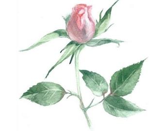 little rose watercolor, nursery flower decor, Rose Watercolor, Rose Wall Decor, girls room decor, rose flower print, flower watercolor
