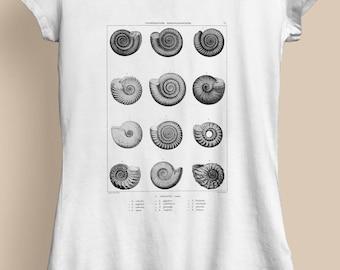 7ba57663 Fossils Ladies T-Shirt - Fossil T-Shirt, Fossils T-Shirt, Fossil Art, Fossil  Illustration, Fossils Art, Fossils Illustration, D2