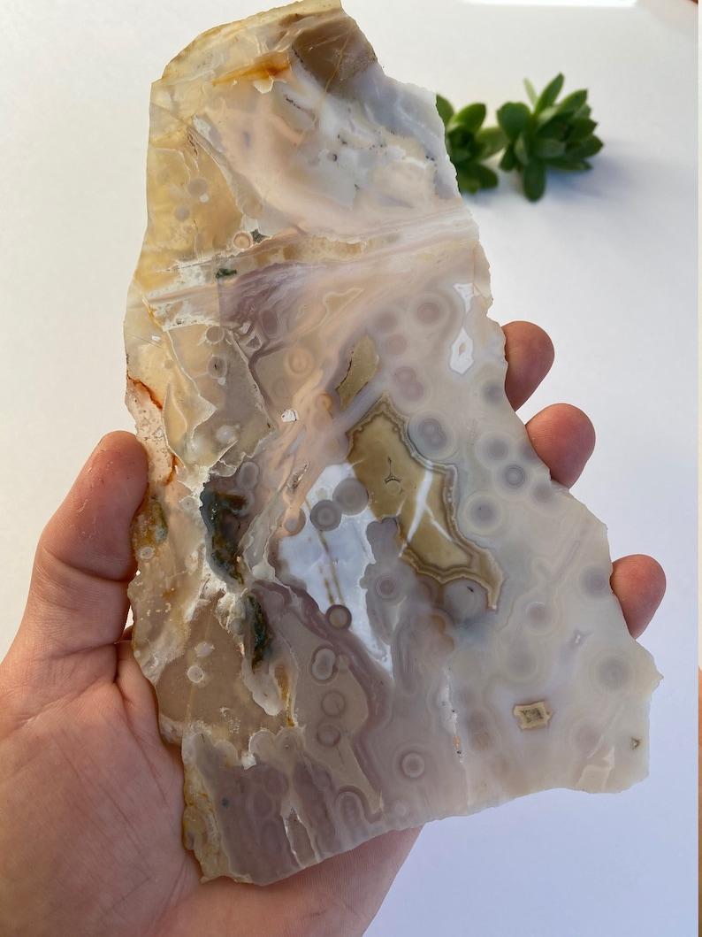 Ocean Jasper Slab Old Stock Jelly Translucent Slab OJS6