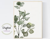 Eucalyptus Wall Art. Botanical Art Print