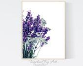 Lavender botanical Art print. Botanical Wall art