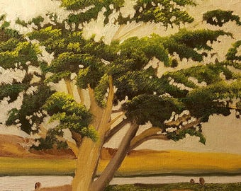 Ocean Park Tree, Lompoc , California