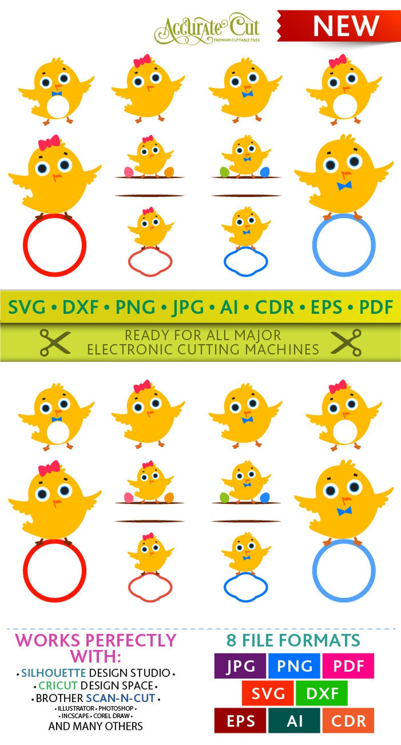 Chick Svg Chick Monogram Frames Svg Chick Frame Svg Easter image 0