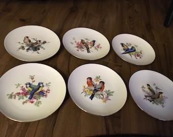 J K W Bavaria decorative bird plates. Made in western Germany.
