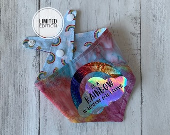 Double sided Rainbow Dog Bandana with a 'Be a rainbow in someone else's cloud' vinyl print.