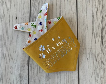 Birthday Dog Bandana in yellow with a rainbow paw print fabric.