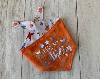 Birthday Dog Bandana in orange and stars fabric.
