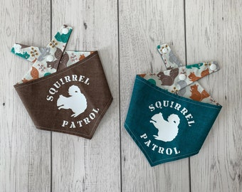 Squirrel Patrol Dog Bandana in Teal and Brown